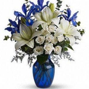 Blue Horizons Flowers