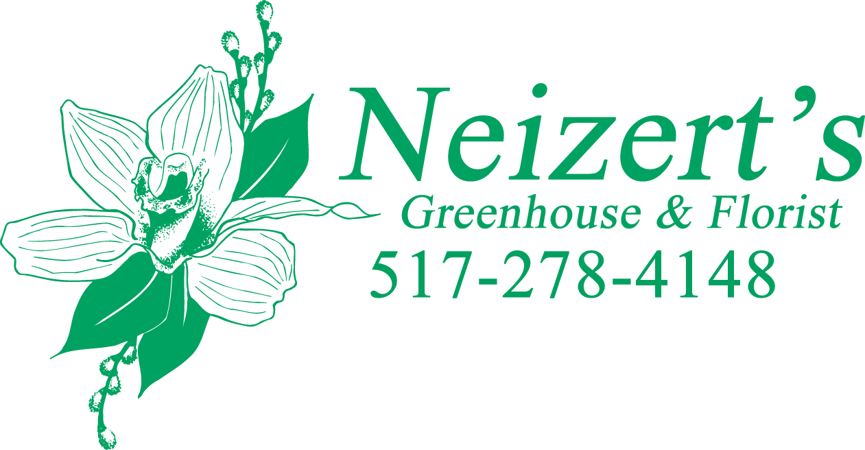 Neitzert's Greenhouse