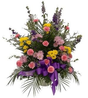 Sympathy Mixed Floral