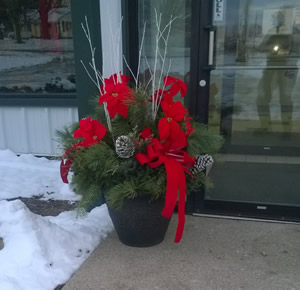 Christmas Evergreen Planter